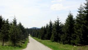 15 05 16 Fichtelberg Erzgebirge (12)